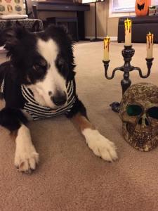 Oberon and Yorick